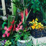 Exotic little florist flowersinseminyak georgakellyleahrobyn baliholiday woohoo seminyak secondlastday
